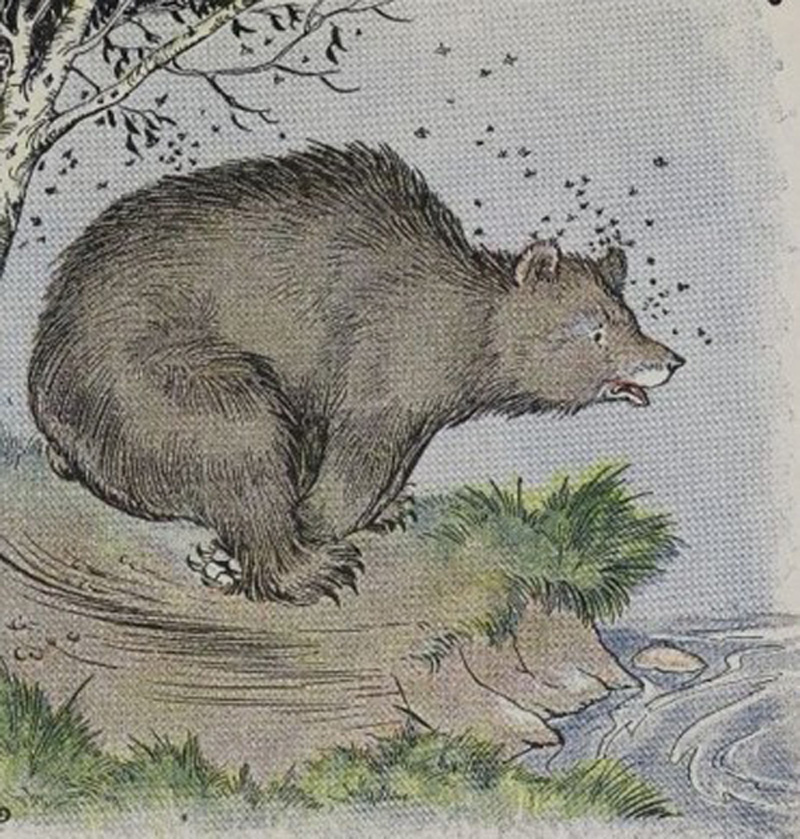 The Bear is chased by a swarm of bees